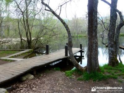 Cascadas Purgatorio,Bosque Finlandia; pueblos con encanto madrid; turismo activo